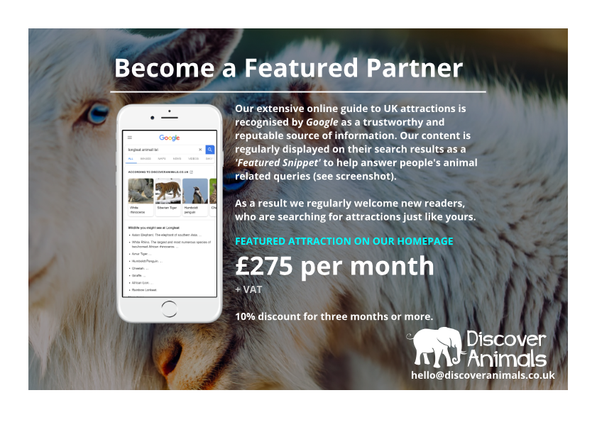 Become a featured partner