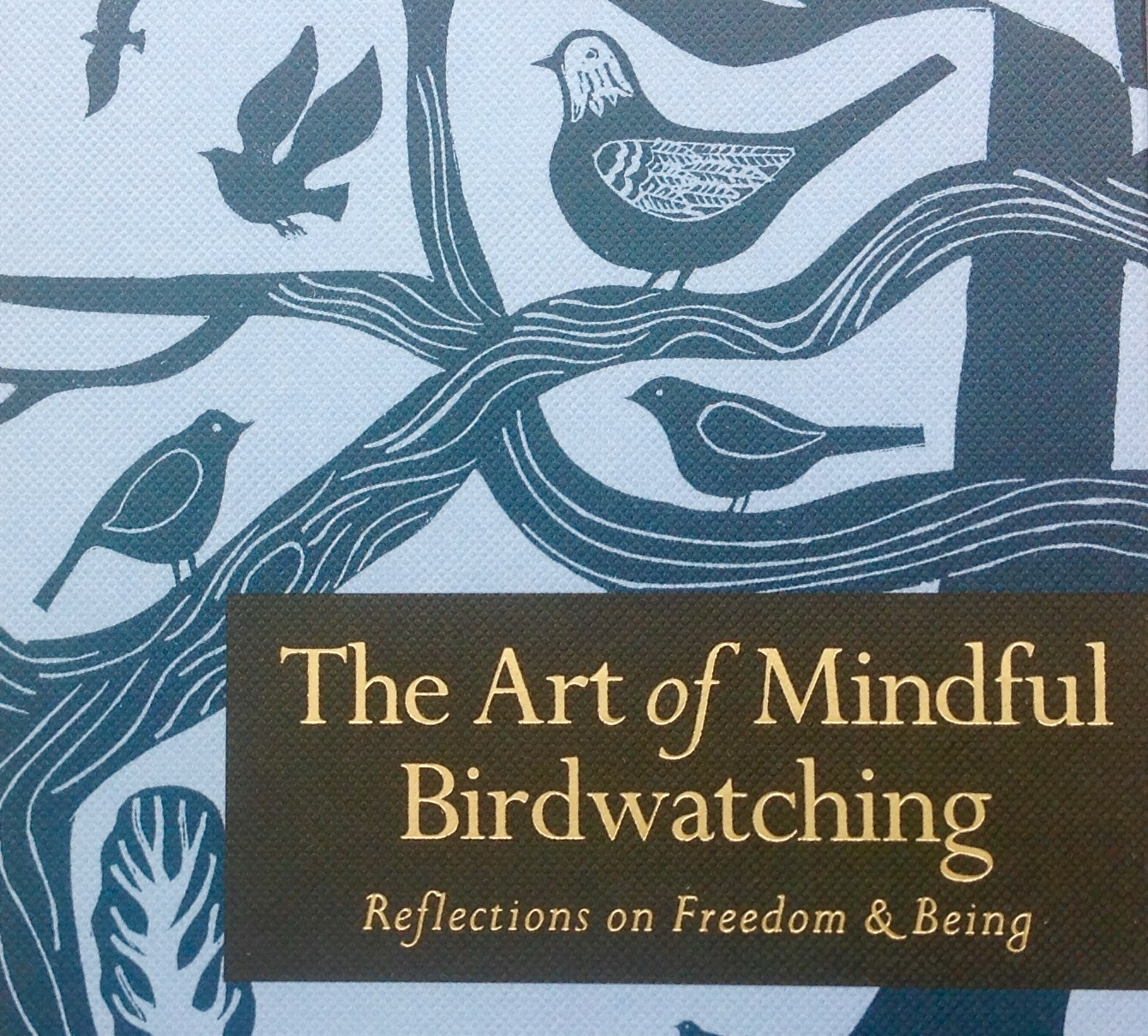 A Guide To The Art Of Mindful Birdwatching