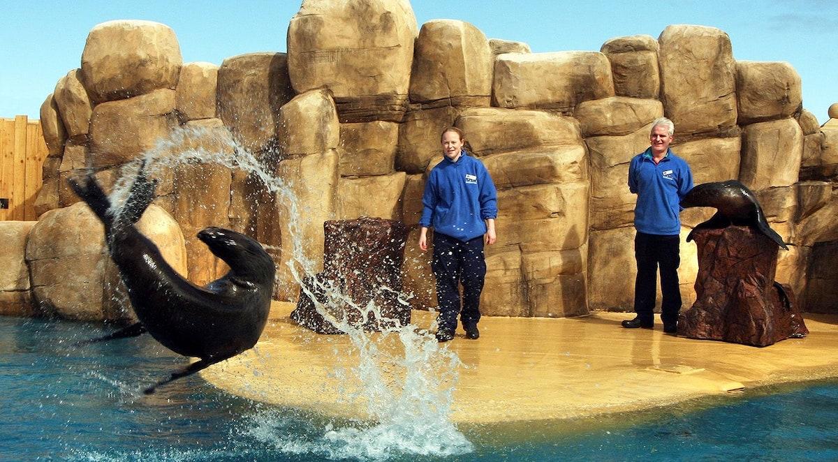 Rhyl Sea life Aquarium